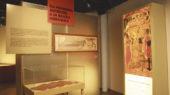 Catifes de ciment museu thermalia